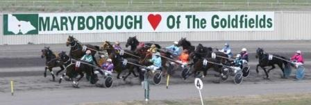 Harness Racing Show 28-11-20